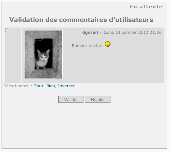 Fig.01 Page Commentaires en attente